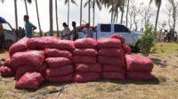 50 Ton Bawang Merah Ilegal Diamankan di Pesisir Pantai Paya Bateung Aceh Utara